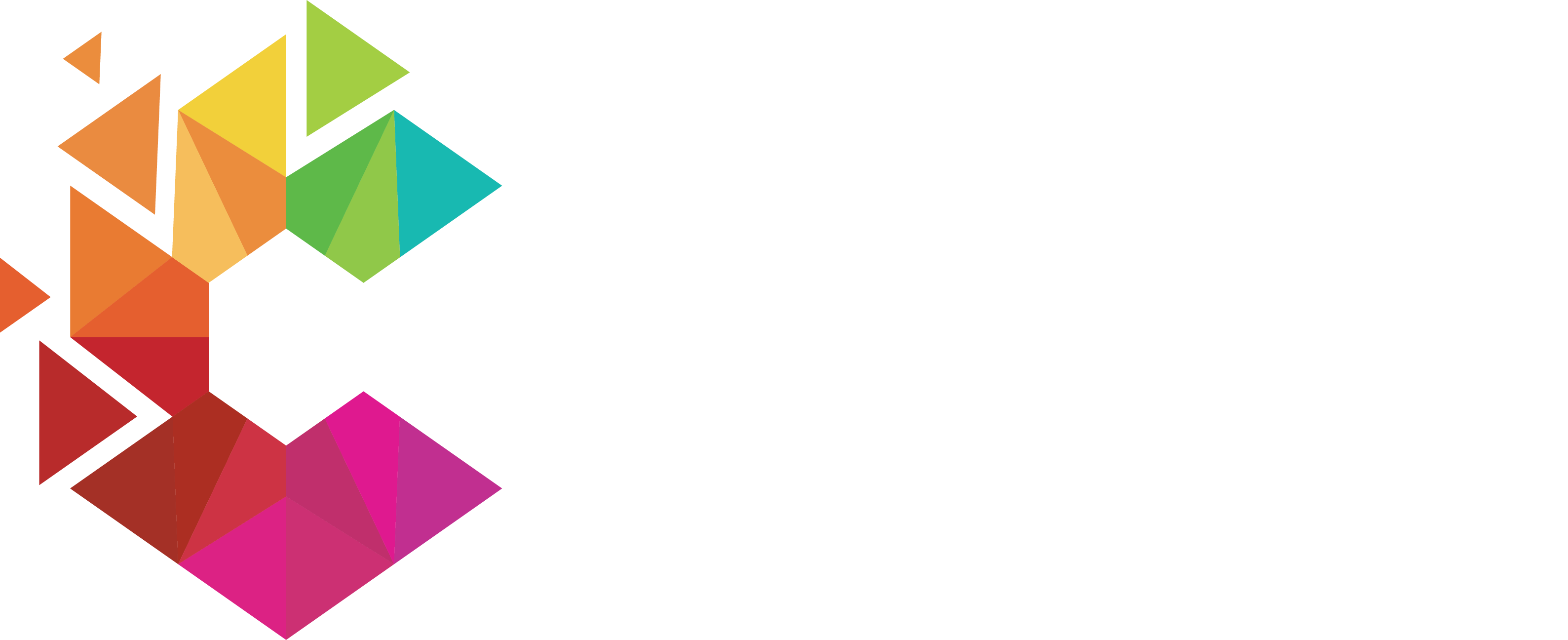 VAN ZYL Connections